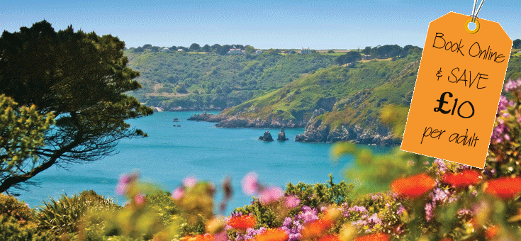 Guernsey flowers and bay