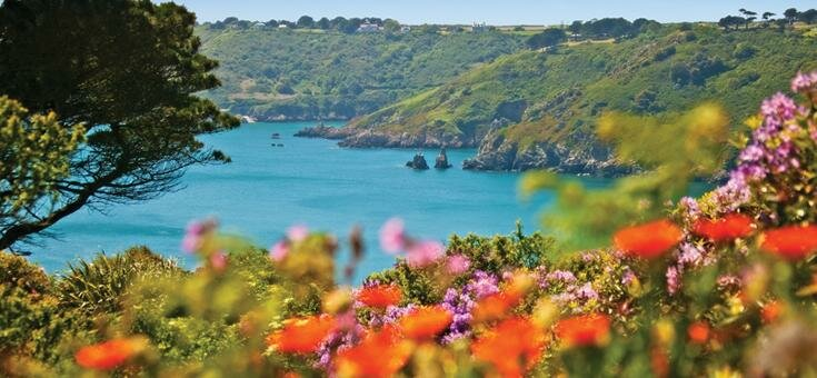 Guernsey bay with flowers