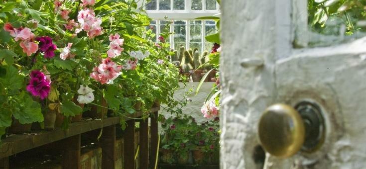 Victorian Greenhouse, Candie Gardens
